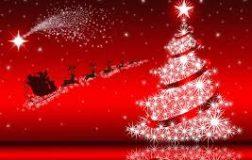 I Nostri Menù di Natale